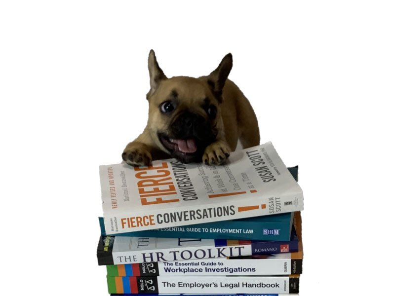 dog with books on human resources